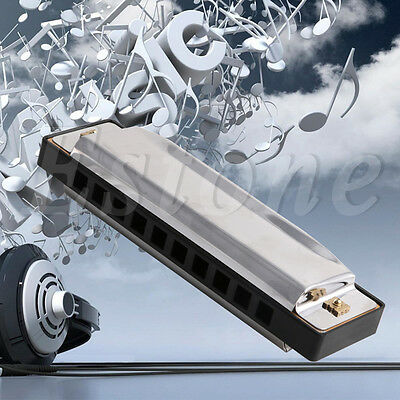 Blues Harmonica 10 Holes Key of C Musical Instrument Stainless Steel w/ Case