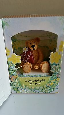 Little Teddy In A Box Special Daughter Gift  By Cloth Tag