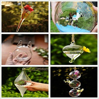 Hanging Glass Flowers Plant Vase Stand Holder Terrarium Container  NR