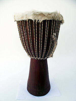 Afrika Mali Djembe Rosewood Hartholz Drum Trommel Absolutes Schnäppchen Top 667