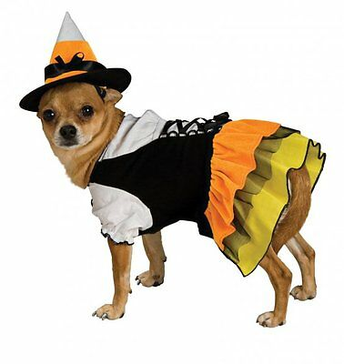 Candy Corn Witch Dog Costume