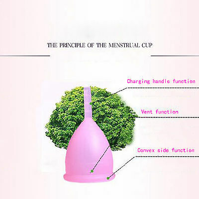 New Reusable Silicone Menstrual cup Soft Small Cup S-L Size High Quality