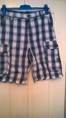 Bnwt Mens New York Yankees Blue Checky Baseball Shorts