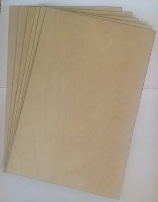 5 X Birch plywood sheets 0.8 thick
