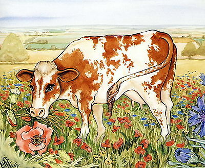 Vintage HEALEY Art Print HEREFORD Farm Cattle Breed Cow Poppy Flowers Landscape