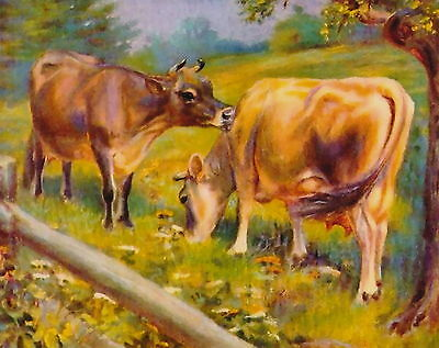 8x10 Miner Print Farm Animal Farming Livestock Dairy Cattle Herd Jersey Cows Cow