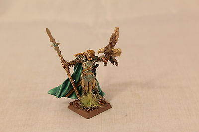 Warhammer Wood Elf Lord with Hawk Well Painted
