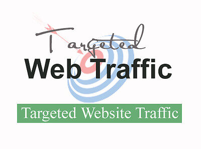 10,000 Keyword Targeted Google Organic Website Visitors Only $7.99
