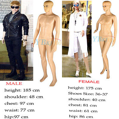 Natural Copmplexion Full Body Female Male Mannequin Manikin Model Window Display