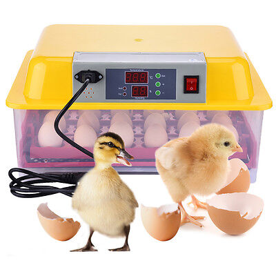 Digital 24 Eggs Incubator Transparent Poultry Chicken Eggs Turning Automatic