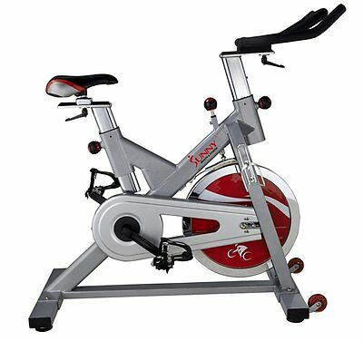Sunny Health&Fitness SF-B1110S Indoor Cycling Bike, Silver