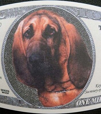 Bloodhounds FREE SHIPPING! Million-dollar novelty bill