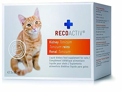 RECOACTIV Kidney Tonicum for Cats - stimulates food intake and provides your cat