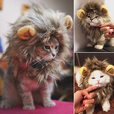 Pet Furry Hat Costume Lion Mane Wig For Cat Halloween Dress Up With Ears