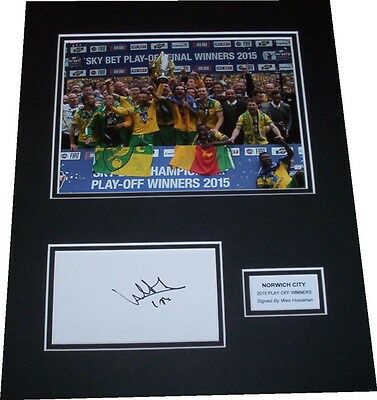 Wes Hoolahan - Norwich City Signed Card Mounted Display 2015 Play-Off Winners