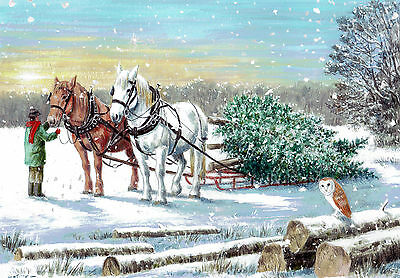 Charity Christmas Cards - In aid of horse and animal welfare charity - 10pk