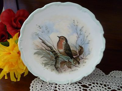 Royal Albert Woodlands Bird Collection Robin  Plate  Made In England