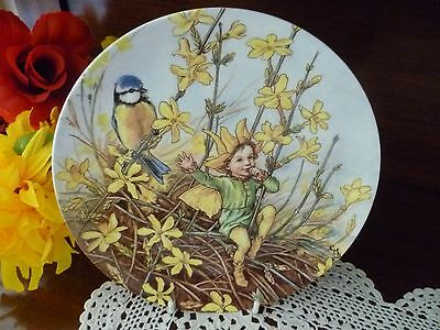 Wedgwood The Winter Jasmine  Fairy Plate   Made In England