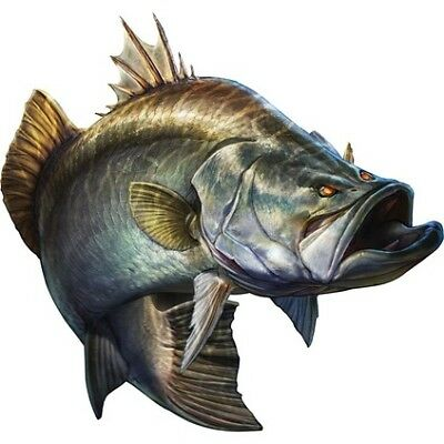 Savage Barramundi Sticker Set - Large (2PK)