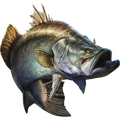 Savage Barramundi Sticker Set - Small (2PK)