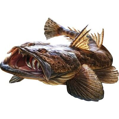 Savage Flathead Sticker Set - Large (2PK)