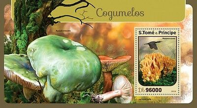 Z08 ST16404b Sao Tome and Principe 2016 Mushrooms MNH