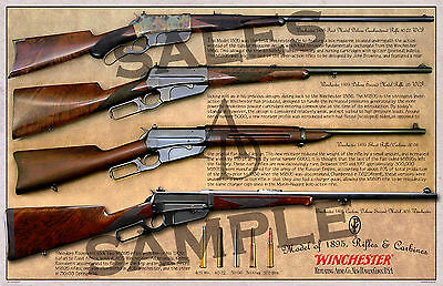 Winchester Lever Action Model of 1895 Poster 11 x 17
