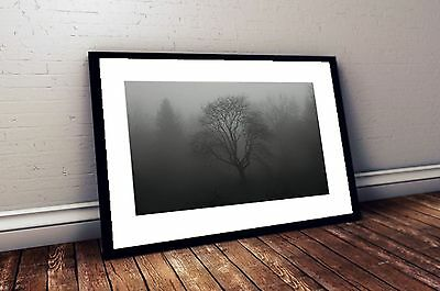 Black and White Photography Foggy Tree Print in the style of Ansel Adams