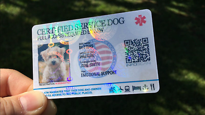 Holographic Service Dog Id Card For Service Medical Emotional Ptsd Animal