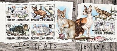 Z08 IMPERFORATED CA16403ab CENTRAL AFRICAN REPUBLIC 2016 Cats MNH Set