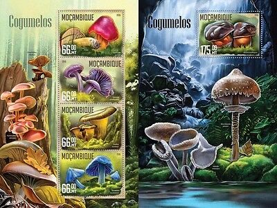 Z08 IMPERFORATED MOZ16201ab MOZAMBIQUE 2016 Mushrooms MNH Set