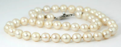 VINTAGE AKOYA PEARL CHOKER NECKLACE w STERLING SILVER CLASP 8mm PEARLS 1960s