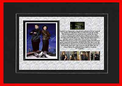 Castle Tv Classic Mounted Display