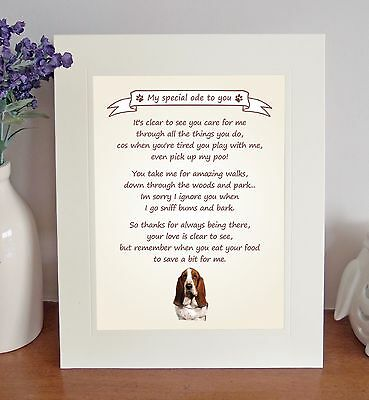 Basset Hound Thank You FROM THE DOG Poem 8 x 10 Picture/10x8 Print Novelty Gift