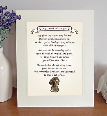 German Shorthaired Pointer Thank You FROM THE DOG Poem 8 x 10 Picture/10x8 Print