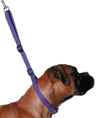 K9 Adjustable Pro  Dog Grooming Speed Noose  Groom Noose 5 Colours
