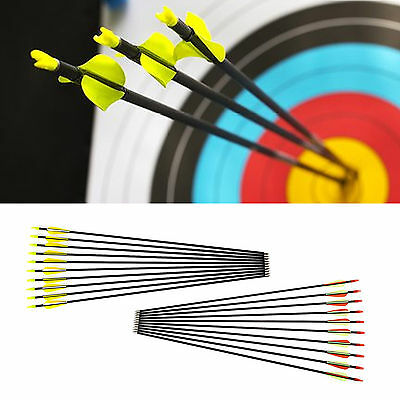 "10 pcs Fibreglass 31"" inch Archery Arrows Hunter Arrow Target & Field Practice"