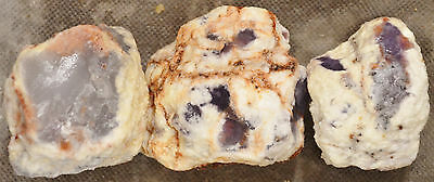 Mexican Purple Chalcedony Nodules Cutting Rough 3 pieces 1 pound