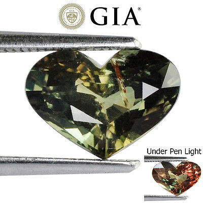 1.72Cts Gia Certified Natural Alexandrite Colour Change Heart Rare Gemstone