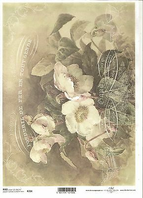 Rice Paper for Decoupage Scrapbooking Vintage White Flowers A4 ITD R724