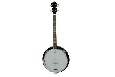 4 String Banjo With Milky Remo Head by Bryce