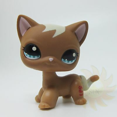 Littlest Pet Shop LPS #1170 Mocha Brown Tan Curls Short Hair Siamese Kitten Cat