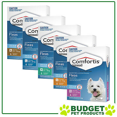 Comfortis For Dogs & Cats Flea Treatment Chew 6 Pack - All Sizes