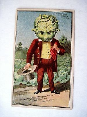 "Vintage 1887 Trade Card for ""Wheeler & Wilson"" Sewing Machines w/ Cabbage Head *"