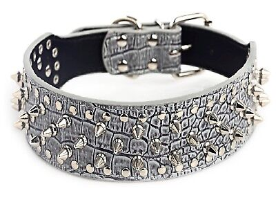 Metal Spiked Studded Leather Dog Collar Pit Bull Rivets L XL Large Breeds Grey