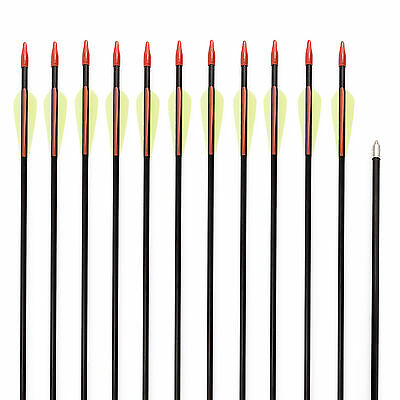12 Fibreglass Archery Arrows Field Hunting Target Broadhead Steel Tip 28/30/32''