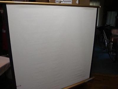 40 x 40 Projection Projector Screen Vintage Radiant Deluxe Meteor