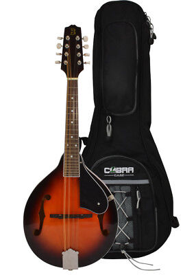 Mandolin A Style and Gig Bag by Bryce