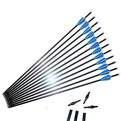 Archery Fiberglass Arrows for Recurve Compound Bow Target Practice Hunting /LOT