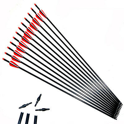 Shooting/hunting fiberglass arrow with thread point for compound bow /LOT